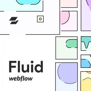Webflow Fluid Gallery